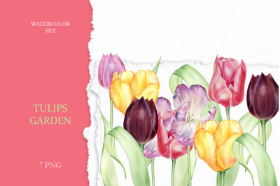 Watercolor Set Tulips Garden