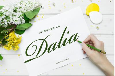 Dalia-New Font