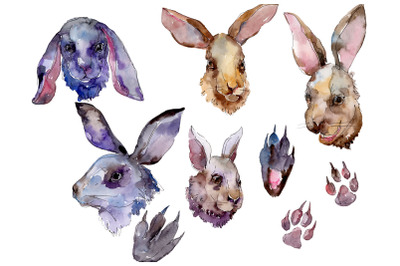 Farm animals: rabbit head Watercolor png