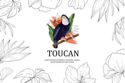 Toucan. Tropical collection