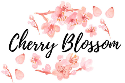 Watercolor floral Cherry Blossom Clipart
