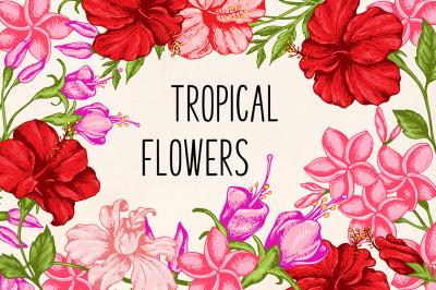 Tropical Flowers Design Kit