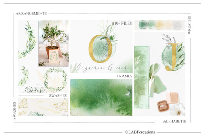 Olive Organic Green. Watercolor Clipart