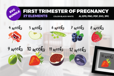 BUNDLE- First trimester of pregnancy SVG Cut Files