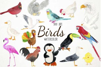 Watercolor Birds Clipart, Birds Clip Art