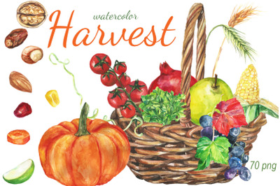 Watercolor Harvest Clip art
