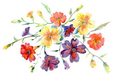 Bouquet flower boom watercolor png