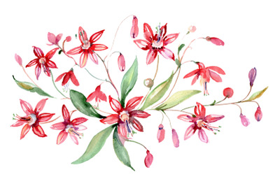 Bouquet red Alley of Glory watercolor png