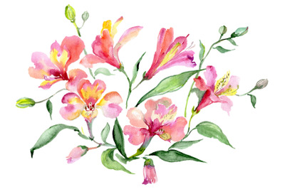 Bouquet red world of good watercolor png