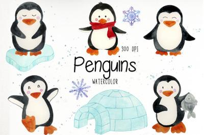 Watercolor Penguin Clipart, Penguin Clip Art