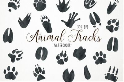 Watercolor Animal Tracks Clipart, Animal Tracks Clip Art, Paw Print Cl