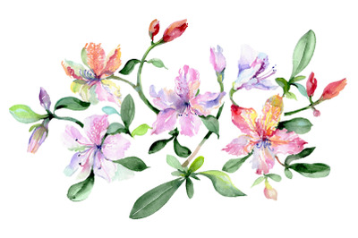 Bouquet Breath of love watercolor png