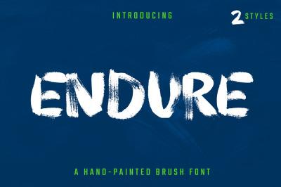 Endure | Hand Painted Brush Font