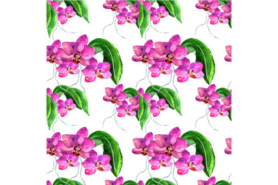 Seamless pattern with orchid.
