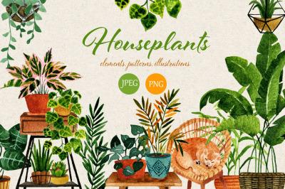 Houseplants. Watercolor set