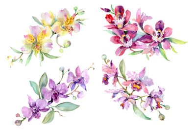 Bouquet with orchids Angel gift Watercolor png