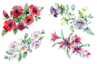 Wildflowers morning dawn watercolor png