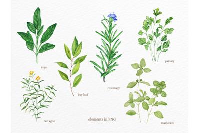 Watercolour decor, Watercolour wall art, Herbs prints, Herbs posters,
