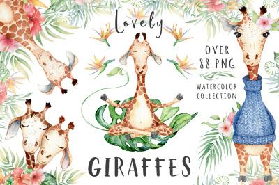 Lovely Giraffes watercolor illustrations