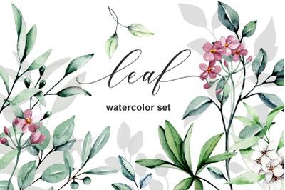 Leaf watercolor set. Elements, patterns, frames, borders.