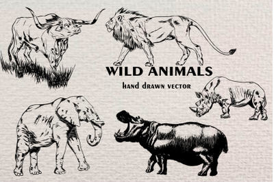 Hand drawn wild animals vector illustrations