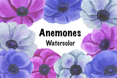 Anemones flowers watercolor
