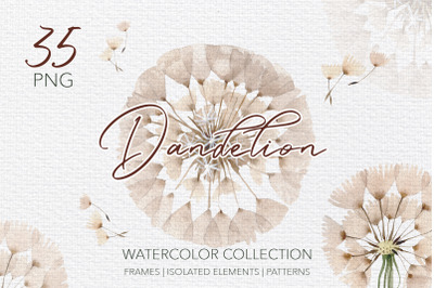Summer dandelion collection watercolor png