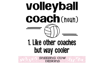 Volleyball coach  Like other coaches but way cooler