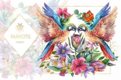 Wattercolor parrot clip art, tropical Sublimation Design