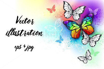 White Background with Rainbow Butterfly