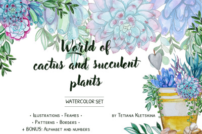 World of cactus and succulent plant