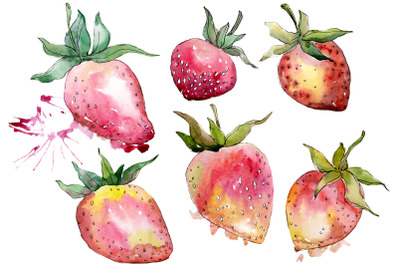 "Strawberry ""Gigantella"" watercolor png"