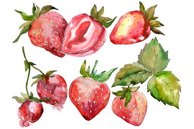 Strawberry Marmolada watercolor png