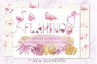 Tender Flamingo Watercolor Alphabet