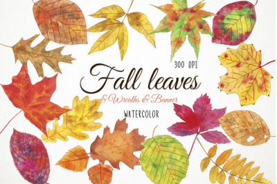 Watercolor Fall Leaves Clipart, Autumn Leaves Clipart, Fall Leaves Ill
