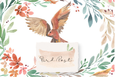 Bird Post - Watercolor Collection
