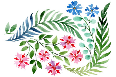 Flower drawing watercolor png