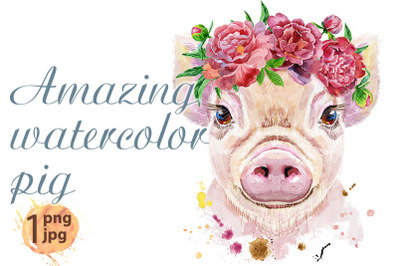 Watercolor portrait of pig