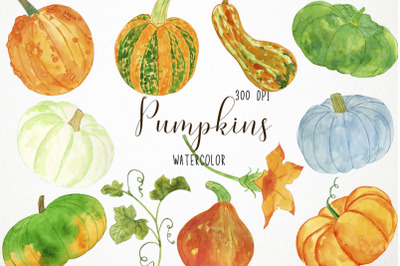 Watercolor Pumpkin Clipart, Pumpkin Illustration