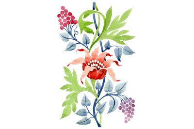 Ornament flower Aromas of nature watercolor png