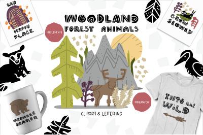 Woodland Forest Animals Set