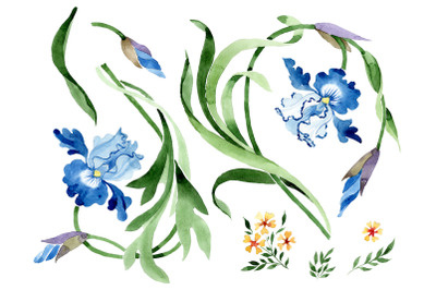 Ornament with irises Watercolor png