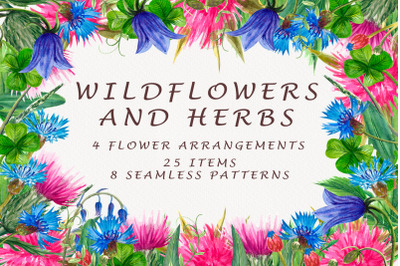 Wildflowers and herbs
