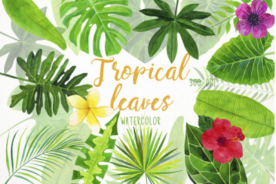 Watercolor Tropical Leaves Clipart, Tropical Leaves Illustration