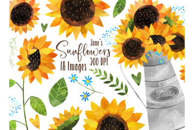 Watercolor Sunflower Clipart