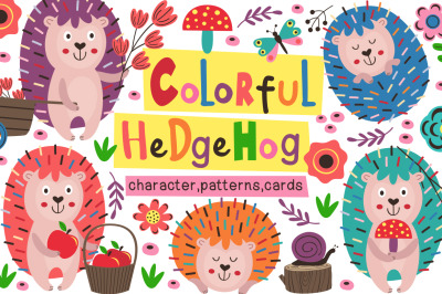 colorful hedgehogs collection