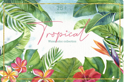 Tropic leaves&flowers Watercolor set