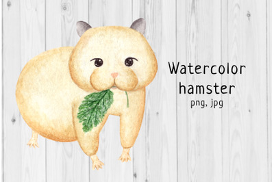 Watercolor hamster 3