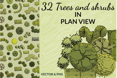 Set of 32 hand drawn ink and colored trees in plan view.