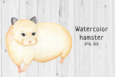 Watercolor hamster 4